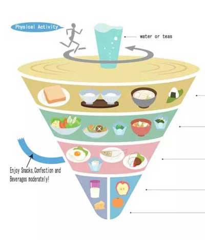 加拿大这种膳食指南有明显缺陷的国家也将植物放在了金字塔型膳食组合